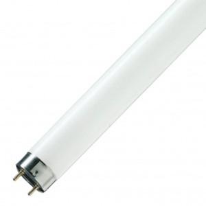 Люминесцентная лампа для растений T8 Osram L 36 W/77 FLUORA G13, 1200 mm 4050300003184