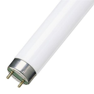 Люминесцентная лампа T8 Feron FLU1 10W G13 6400K 345mm