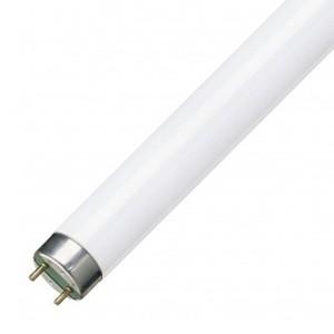 Люминесцентная лампа T8 Osram L 15 W/865 PLUS ECО G13, 438 mm