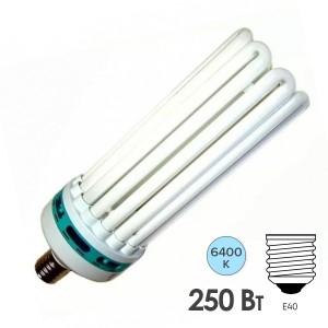 Лампа энергосберегающая ESL 8U17 250W 6400K E40 8U d128x400 холодная