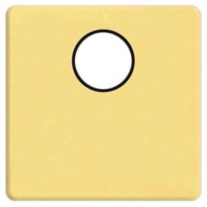 Накладка TV розетки с 1-м разъемом Fede Bright gold черный