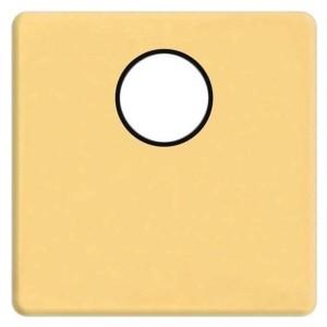 Накладка TV розетки с 1-м разъемом Fede Real gold черный