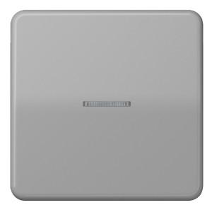 Клавиша 1-ая для одноклавишного выключателя/кнопки с подсветкой Jung CD Серый