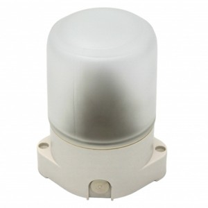 Светильник для бани ЭРА НББ 01-60-001 пластик/стекло, под лампу 60W с цоколем Е27 5056396207054