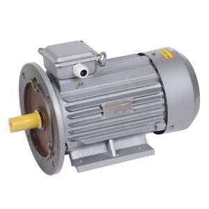 Электродвигатель асинхронный 3ф. АИР 100L2 380В 5,5кВт 3000об/мин (лапы + фланец) 2081 DRIVE IEK