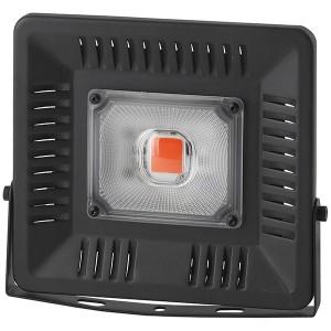 FITO прожектор ЭРА LED 50W BLUERED 784157