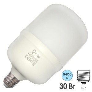 Лампа светодиодная FL-LED T100 30W 6400К 220V-240V 2800lm E27 (+ переходник E40) дневной свет